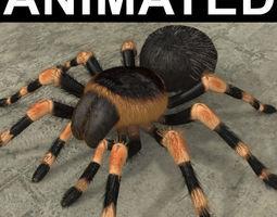 animated ANIMATED Tarantula 3d model a