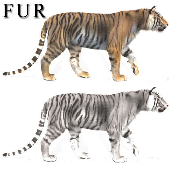 The Ultimate CGI Tiger - 3d model