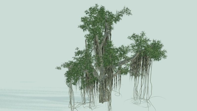 3D Banyan Tree Model Free Download