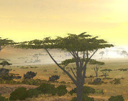 3D Africa Savanna Pack v1