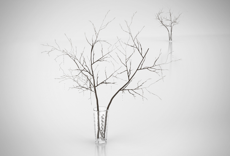 decorative branches 3d model max obj 3ds c4d mtl 1