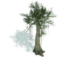 kapok tree 3d