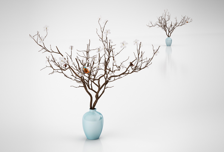 plant cgtrader models tree obj decor model small decorative mtl max pot
