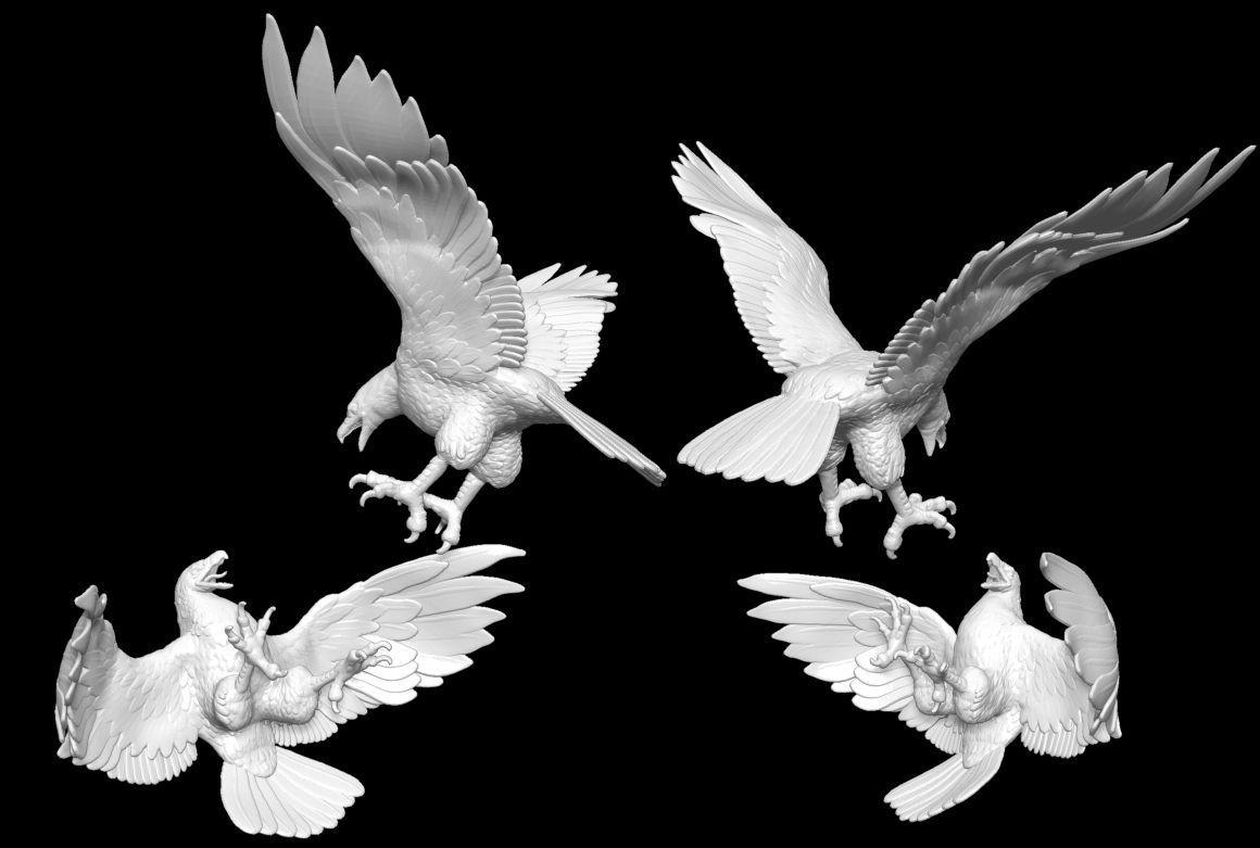 USAF eagles | 3D model