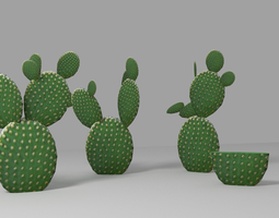 3D model Cactus low
