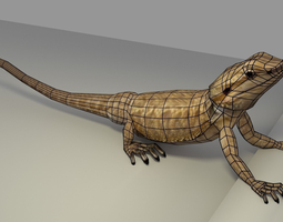 Bearded Dragon low-poly 3D model