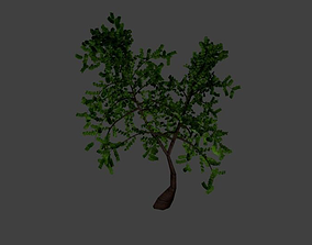 3D asset Trees Bushes Palm-trees Collection