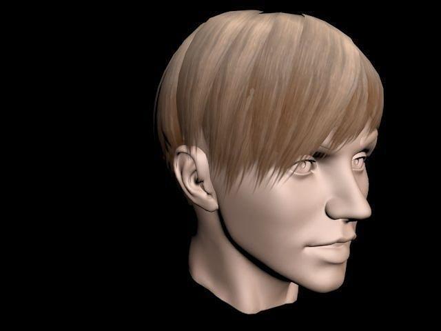 Hair Style 3d Image: Short Light Brown Hair For Woman 3D Model