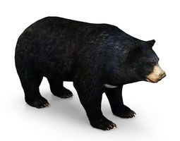Bear low poly 3D model low-poly