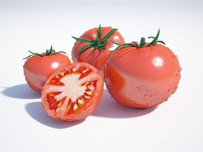 tomato 3d model max obj mtl 1