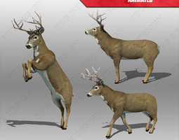 deer animated low-poly 3d model