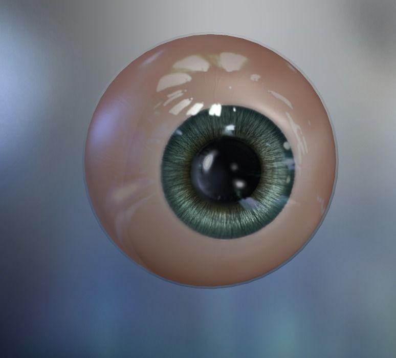 Human Eye 3D | CGTrader