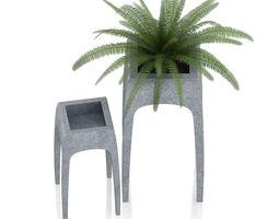3d model fern in metal standing pot