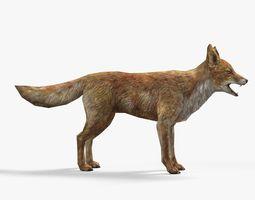 fox animal 1 3D Model