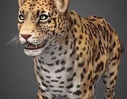 3D asset Low Poly Cheetah