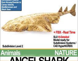 angelshark squatina squatina 3d model obj 3ds fbx c4d vue