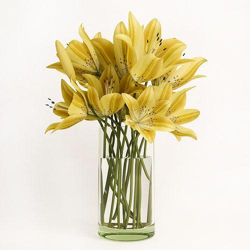 yellow lilies  3d model max fbx 1