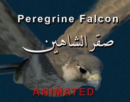 Peregrine Falcon Folded Wings 3D Model