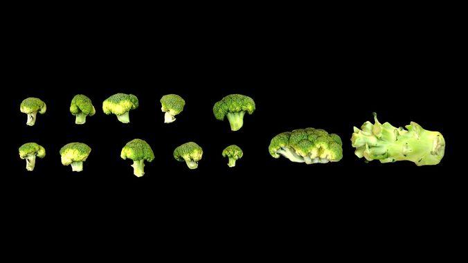 broccoli 3d model low-poly max obj mtl fbx 1