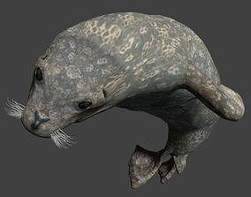 3D Earless seal