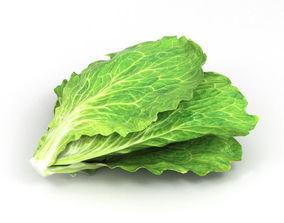 Lettuce garden 3D