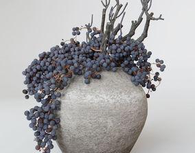 Decor dry grape in ceramic vase 3D