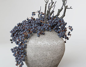 Decor dry grape in ceramic vase 3D