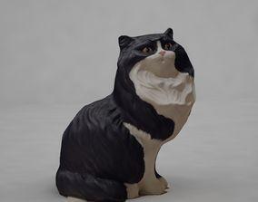 3D asset Cat Statue