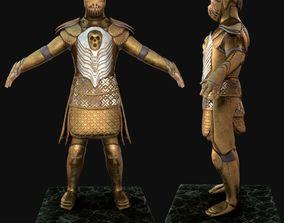 3D Knight Man
