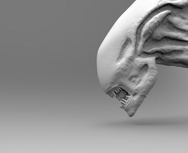 alien xenomorph head inner mouth inside accessory   3d model obj mtl fbx stl 1