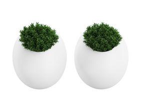 3D model Plant Tree 09