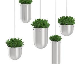 3D model Plant Tree 10