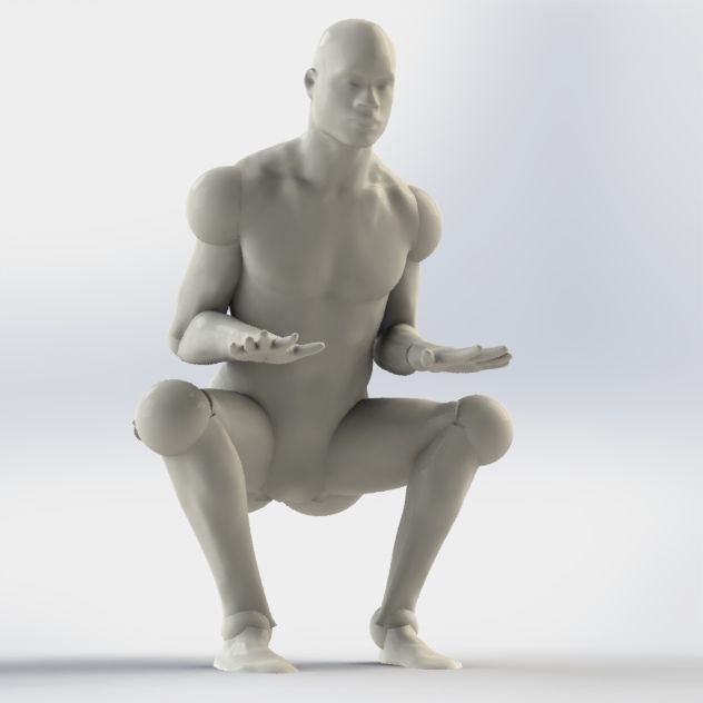 model  human-dummy