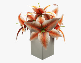 3D model realtime Realistic Potted Flower 003