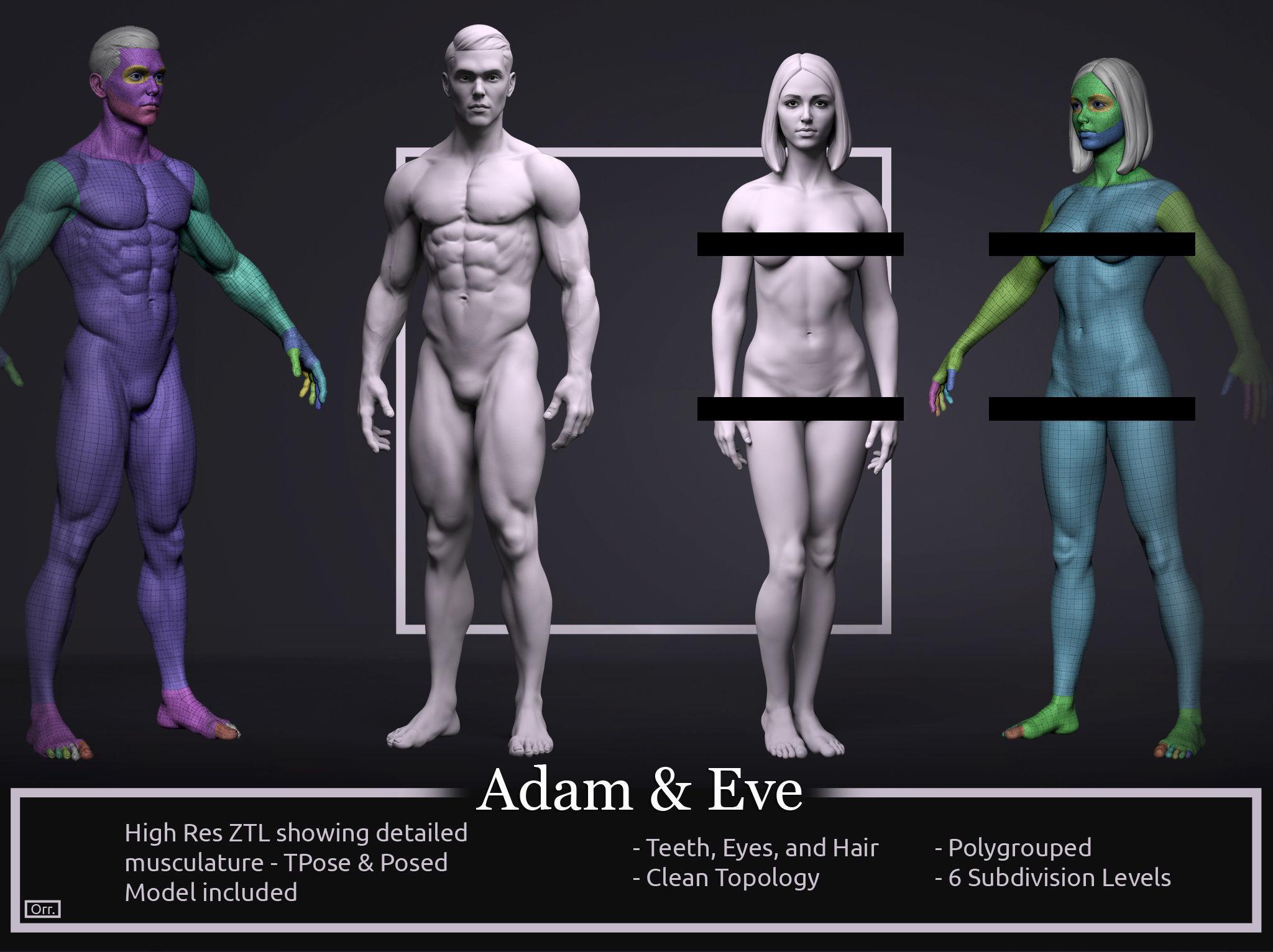 Basemesh Set - Adam and Eve