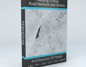 Nanjing Road Network and Streets 3D