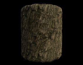 3D PBR Scanned Rough Tree Bark