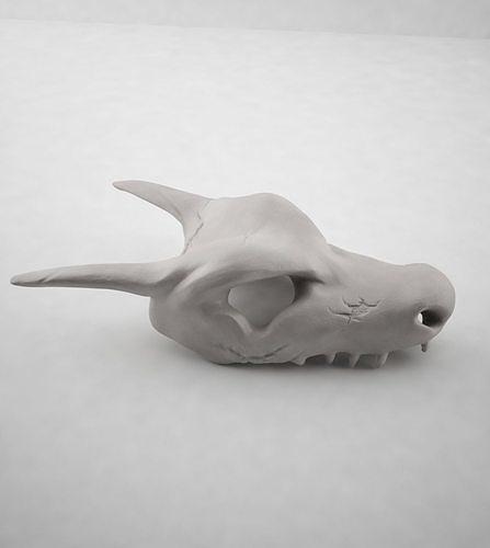 skull charizard 3d model max obj mtl 3ds fbx mat 1