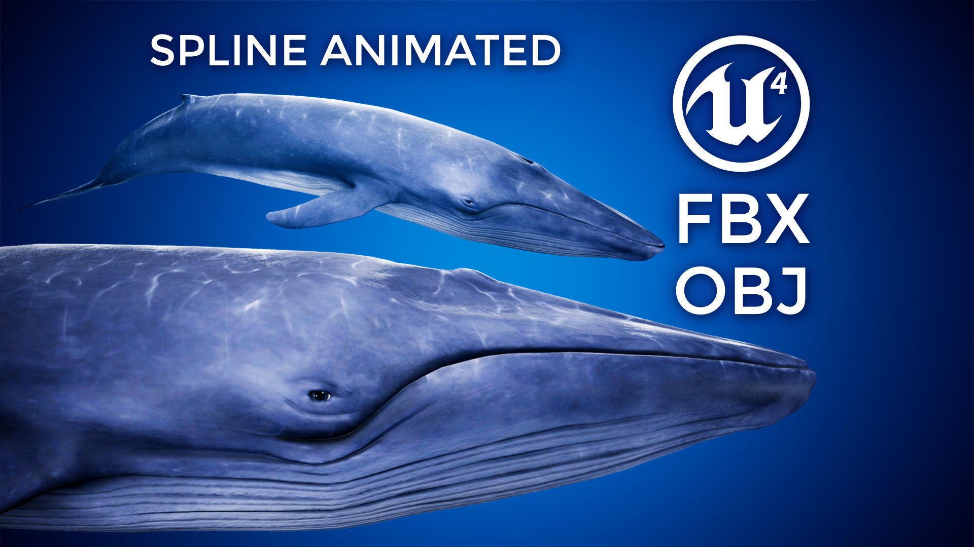 Blue Whale - UE4