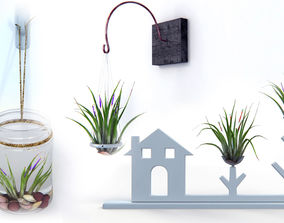 3D model Air Plants Pack