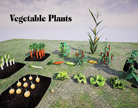 Vegetable Plants 3D model