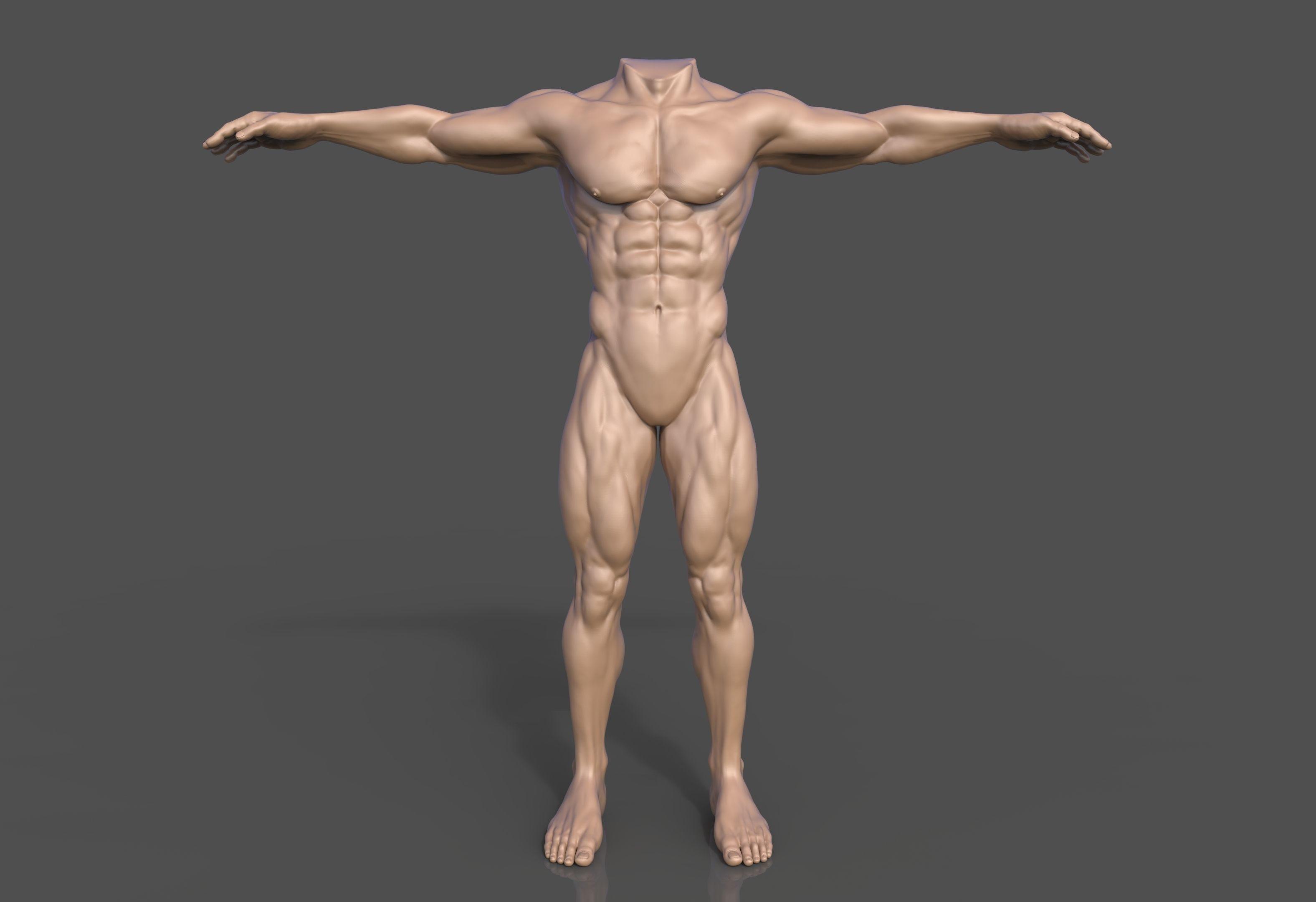 Human Male Body Fantasy Sculpt
