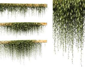 Leaves on the vine for beams or ceilings v3 3D model