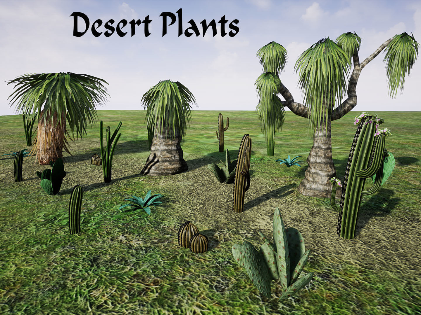 Desert Plants For Unreal 3d Model Cgtrader