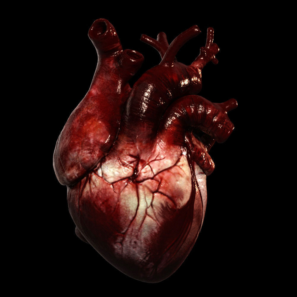 Heart Realistic Production