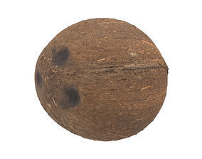 Photorealistic Coconut 3D Scan