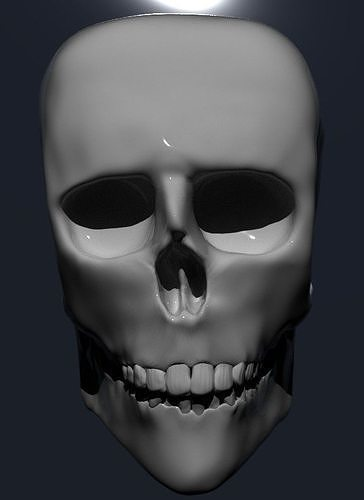 skull 3d model obj mtl fbx ma mb stl ply 1