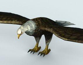 Eagle 3D asset