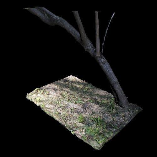 big tree 3d model obj mtl fbx stl 1