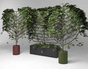3D model Botanical Planter by Len